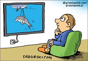 Chory Delfin