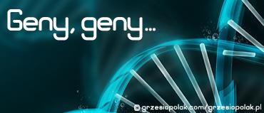 Geny, geny... Esencja marnej doli tkwi w helisie DNA!