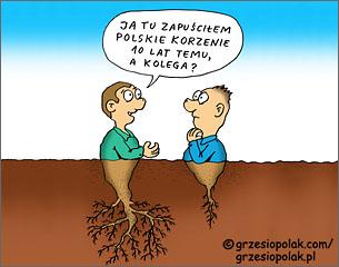 Zapuszczanie polskich korzeni emigracyjnych