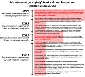 Schemat odczytywania publikacji internetowej (Jakob Nielsen)