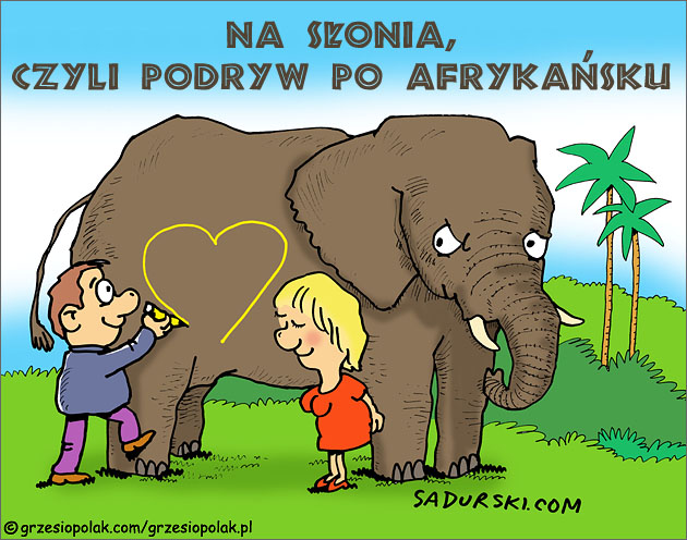 Podryw na słonia