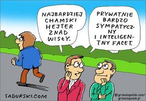 Polski hejter