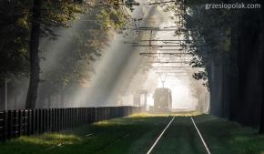Magiczny tramwaj