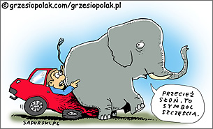 Słoń symbolem szczęścia