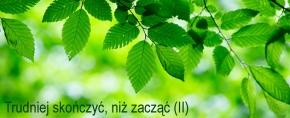 Gałązki z zielonymi listkami
